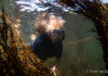 Snorkelen met Sophie in de Grevelingen bij Dreischor - Foto: Yoeri van Es Photography