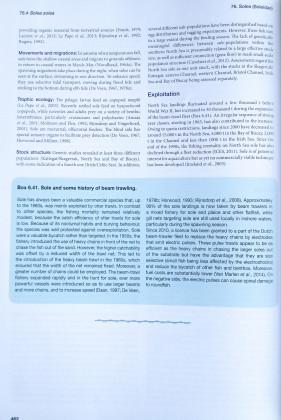 Informatie over de tong (Solea solea) in de visatlas
