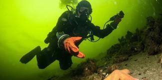 Duiker met droogpakhandschoen - Foto: Yoeri van Es