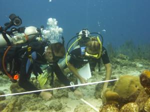 Benjamin Mueller en een collega aan het werk bij een Curaçaos koraalrif