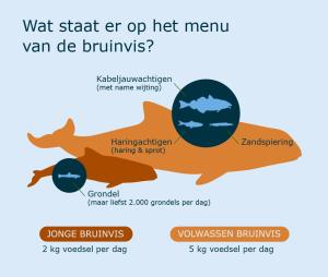 Infographic menu bruinvis