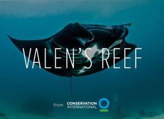 Valen's Reef