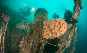 Wrak in de Noordzee - Foto: Cor Kuyvenhoven