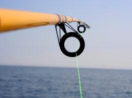 Hengel met groene vislijn - Foto: Jay Erickson / CC BY 2.0