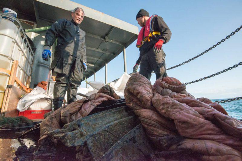 Expeditie ruimt afval MSC Zoe op - Foto: Udo van Dongen